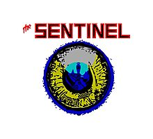 The Sentinel - 80's video games Photographic Print