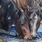 The Onaqui Herd by Gene Praag