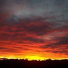 Sunrise Cranbourne North by Cathy McAdie