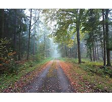 Autumn Path on a Foggy Day Photographic Print