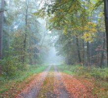 Autumn Path on a Foggy Day Sticker