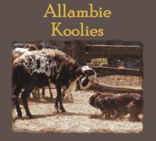 Allambie Koolies Number 2 Kids Clothes