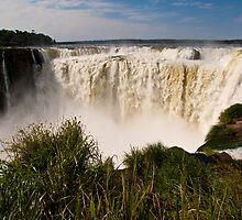 Iguazu Falls - Devil's Gorge #2 by Gabriel Skoropada