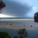 Approaching Storm by Michael John