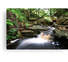 Streaming Media Canvas Print