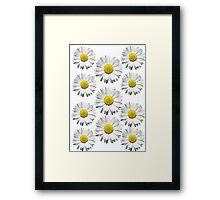 Daisies :3 Framed Print