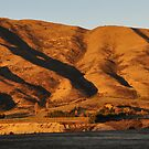 On the road to Wanaka by Peter Hammer