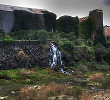 Old Paper Mill - Moorabool River by jacksons