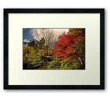 Autumn -Mount Wilson, Sydney -The HDR Experience  Framed Print