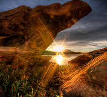 A Rock and a Sunny Place by Bob Larson