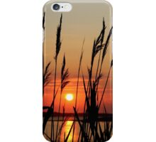 Sunrise Behind Reeds | East Moriches, New York iPhone Case/Skin