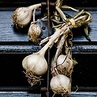 Garlic by Milos Markovic