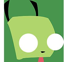 Disguised Gir Photographic Print
