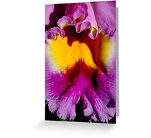 ORCHID'S TRUE COLOURS Greeting Card