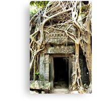 Doorway to the Earth Canvas Print