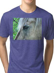 Eye of the Pegasus Tri-blend T-Shirt