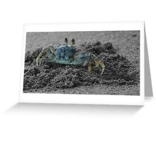 Sand crab Greeting Card