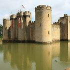 Banners at Bodiam by Dave Godden