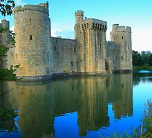 Blue at Bodiam by Dave Godden
