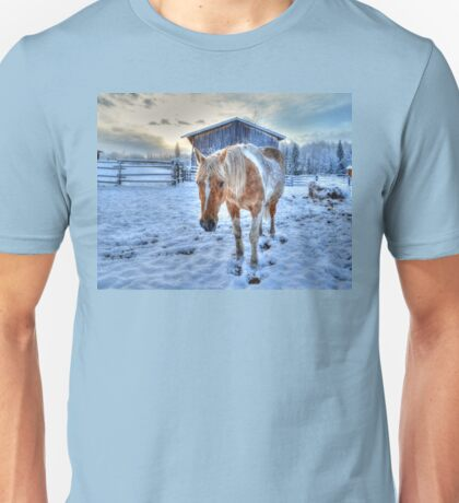 Palomino Paint and Barn in Winter Unisex T-Shirt