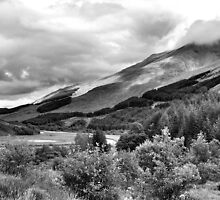 The View From Crianlarich Community Woodland by Lindamell