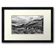 The View From Crianlarich Community Woodland Framed Print