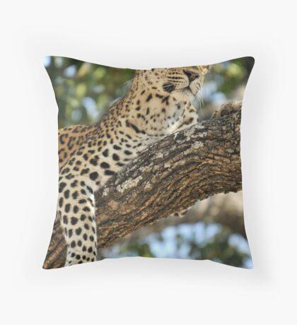 Leopard in repose - Okavango Delta, Botswana. Throw Pillow
