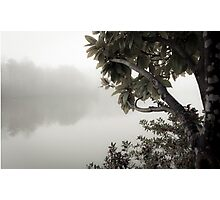 in a fog | 01 Photographic Print