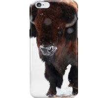 """""""Monarch of the Plains"""" iPhone Case/Skin"""