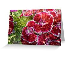 Lovely Flowers. Greeting Card