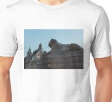 Rome's Fabulous Fountains - Piazza del Popolo Lion Unisex T-Shirt