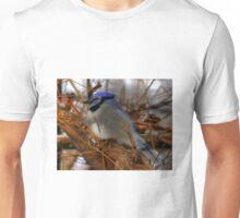 Blue Jay at Rest Unisex T-Shirt