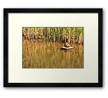 Duck1 Framed Print