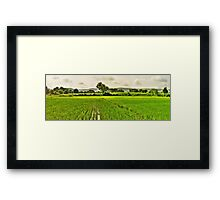 Song of the Season - HDR Panorama Framed Print