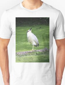 Black crowned night heron yoga pose Unisex T-Shirt