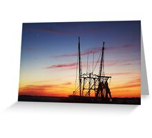the coast is clear.... Greeting Card