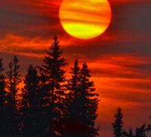 Cariboo Wildfire Sun Sticker