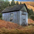 Shed and old bike by Paul  Gibb