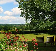 Looking Across Dedham Vale in England's Constable Country by UGArdener
