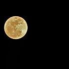 Full Moon - Park City, Utah by FoxSpirit