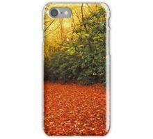 ROAD,AUTUMN iPhone Case/Skin