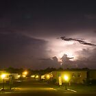 Trailer Park Lightning by Larry  Grayam