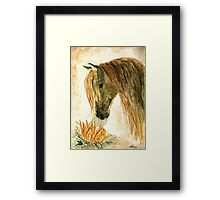 Greeting A Sunflower Framed Print
