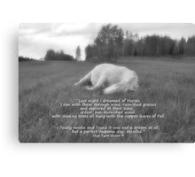 Sleeping White Horse Ranch Field Equine B&W Photo  Canvas Print