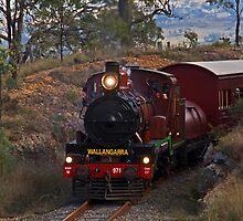 Restored Steam Trail C17 #971 by rossandcher