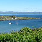 Tarbert of the Crossings by Braedene