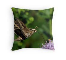 White-lined Sphinx Hummingbird Moth Throw Pillow