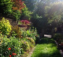May Afternoon in a North Georgia Garden by UGArdener