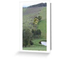 Valley Vineyard Greeting Card