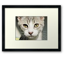 Innocence in my little girl's eyes Framed Print
